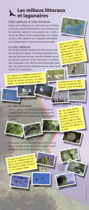Total panneaux Biodiv_006