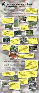 Total panneaux Biodiv_010